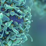 Alternative Treatments to Chemotherapy