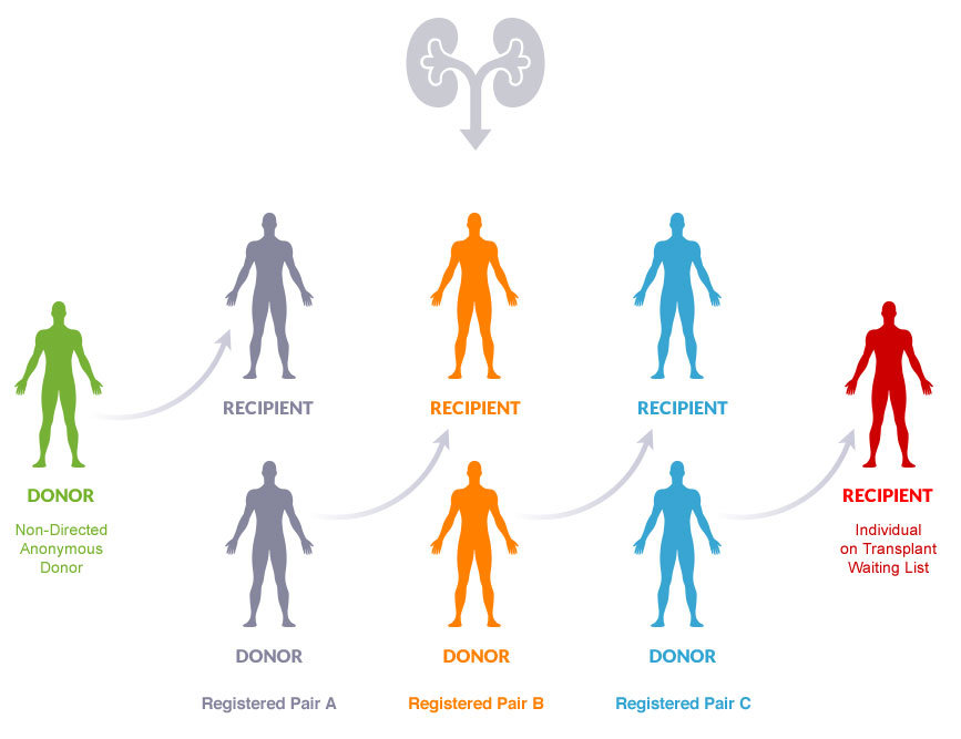 Kidney Transplantation From Unrelated Donor